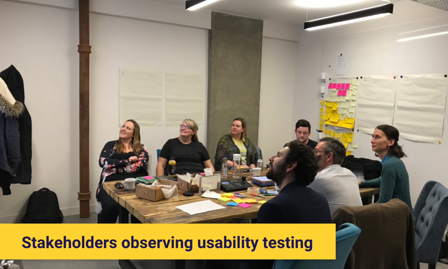 User testing, with stakeholder engagements